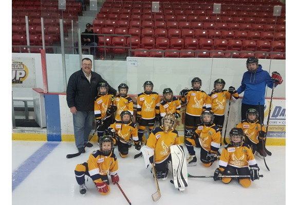 Dodge Caravan Kids Gallery Canadian Youth Hockey Pictures